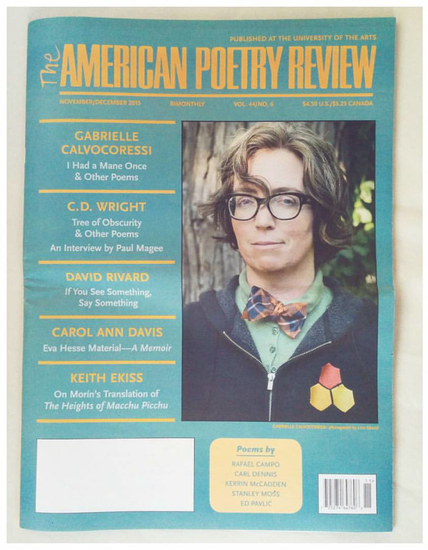 American Poetry Review-1
